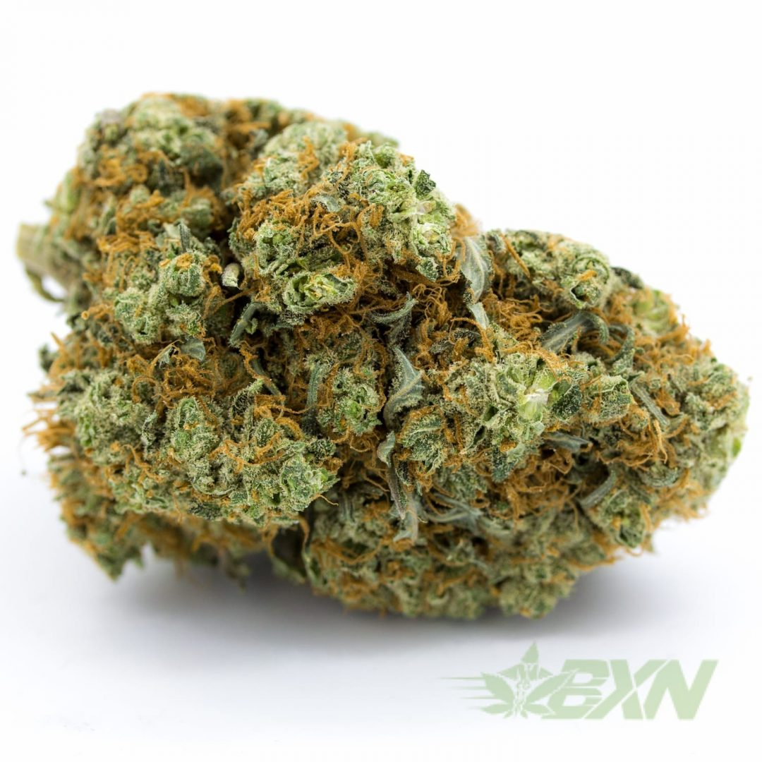 buy medical marijuana canada
