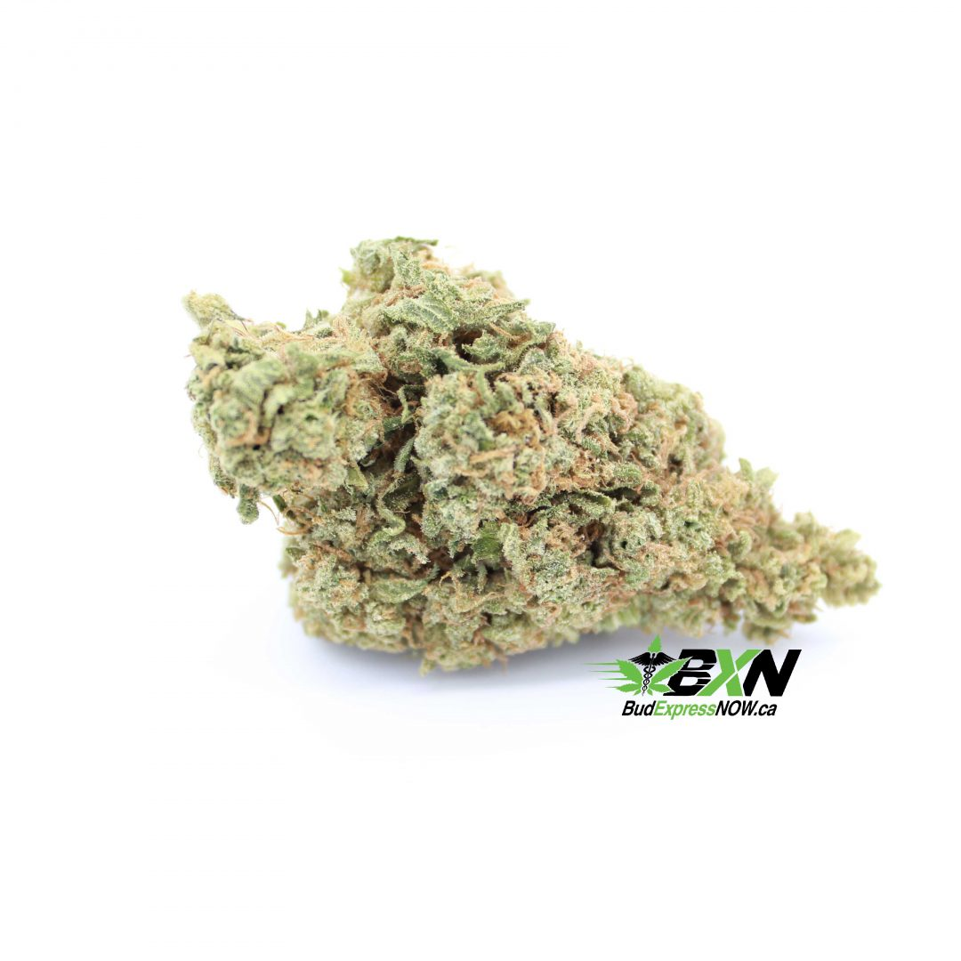 medical cannabis online shop