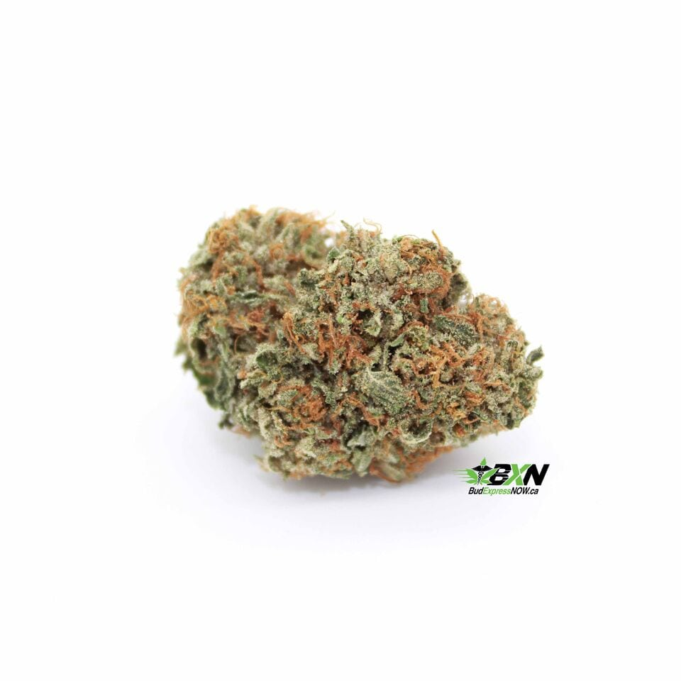 online weed canada