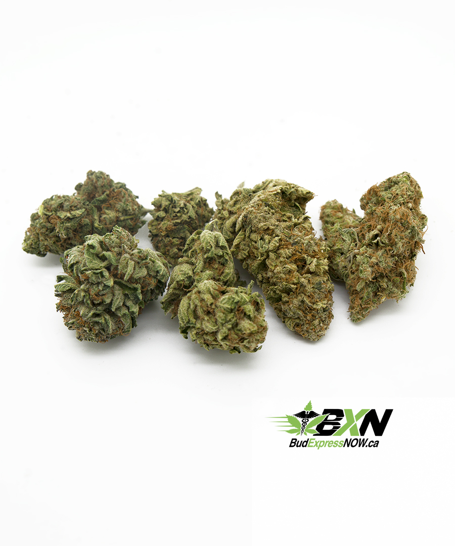 Indica sample pack for sleep, insomnia, stress, pain, anxiety relief