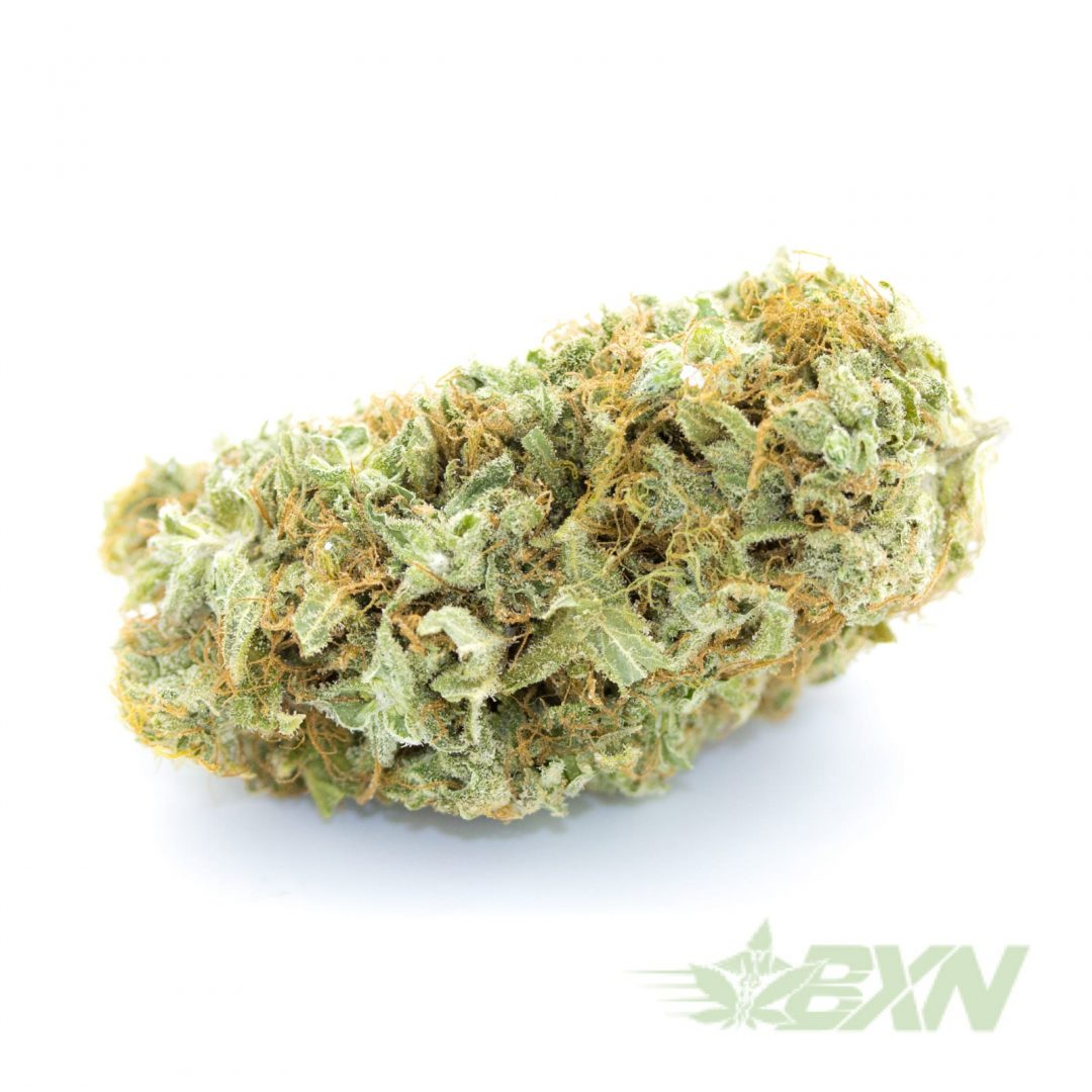 Sugar-Cookies-RAW