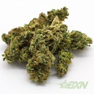 online weed stores canada