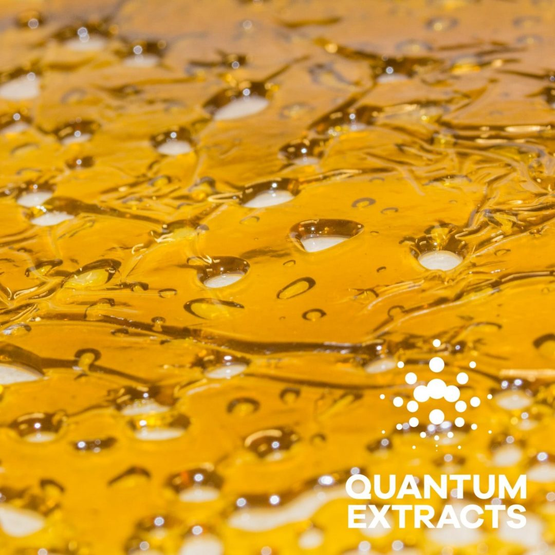 Super Silver Haze (Sativa) - Quantum Extracts Shatter