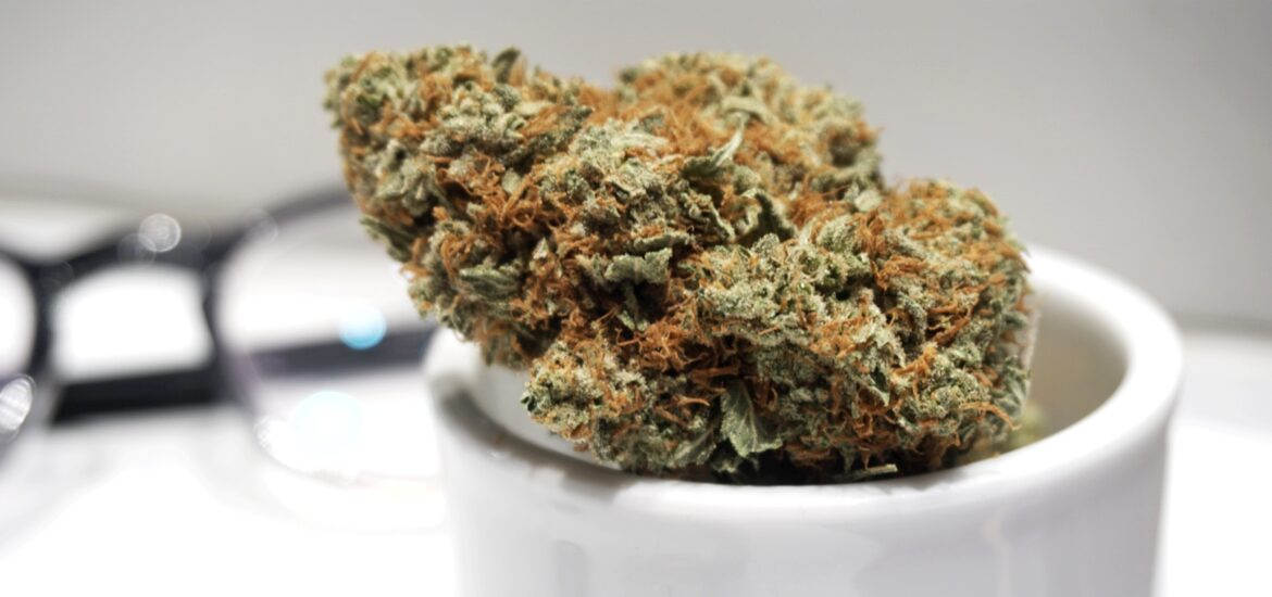 BudExpressNow Growing Your Own Weed