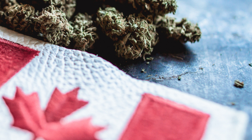 8 Most Popular Canadian Weed Stocks