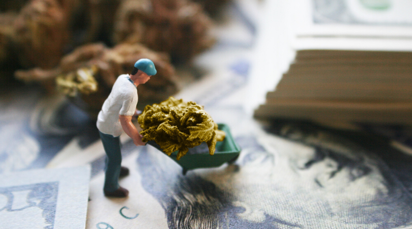 How to Start a Marijuana Business