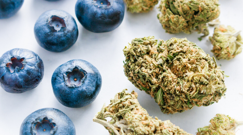 6 Foods That Can Increase Your Cannabis High
