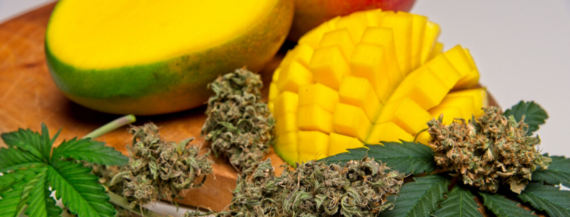 Pairing Cannabis With Mangoes